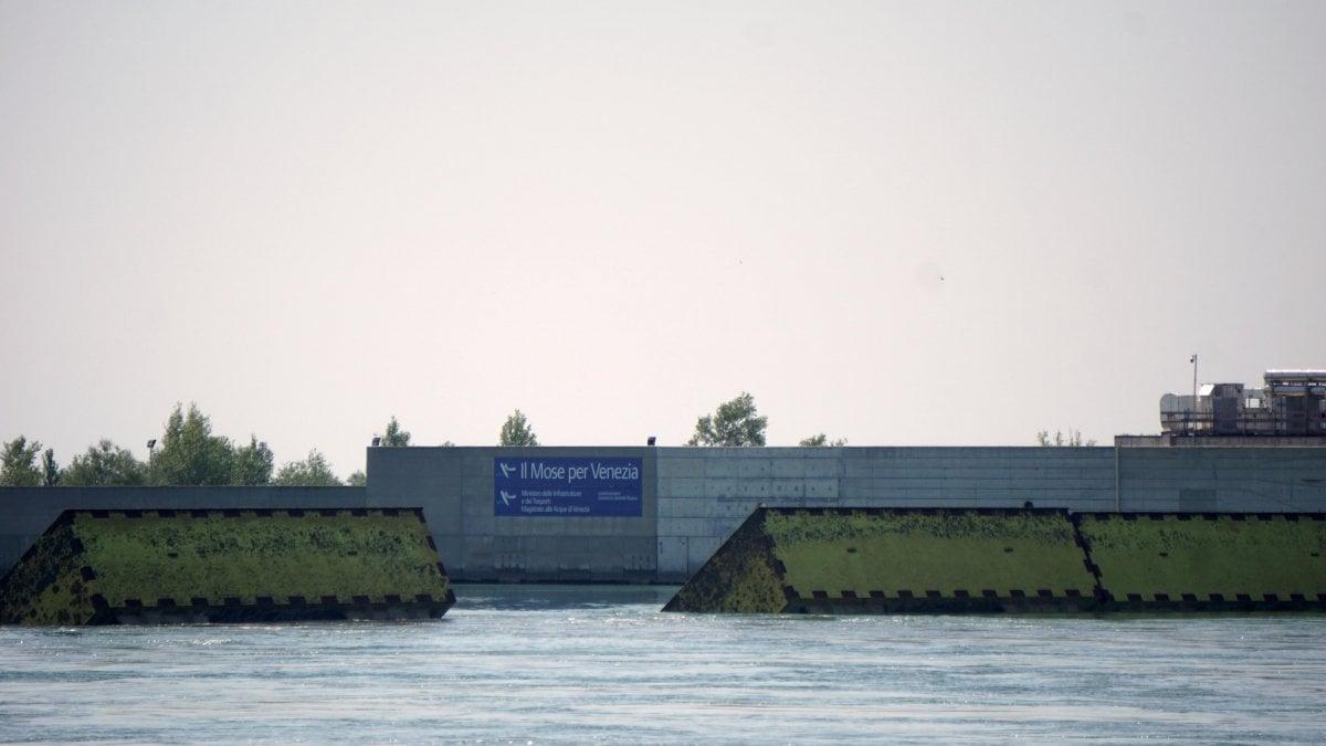 A Venezia e prevista acqua alta si alza il Mose Un giorno importante per la citta