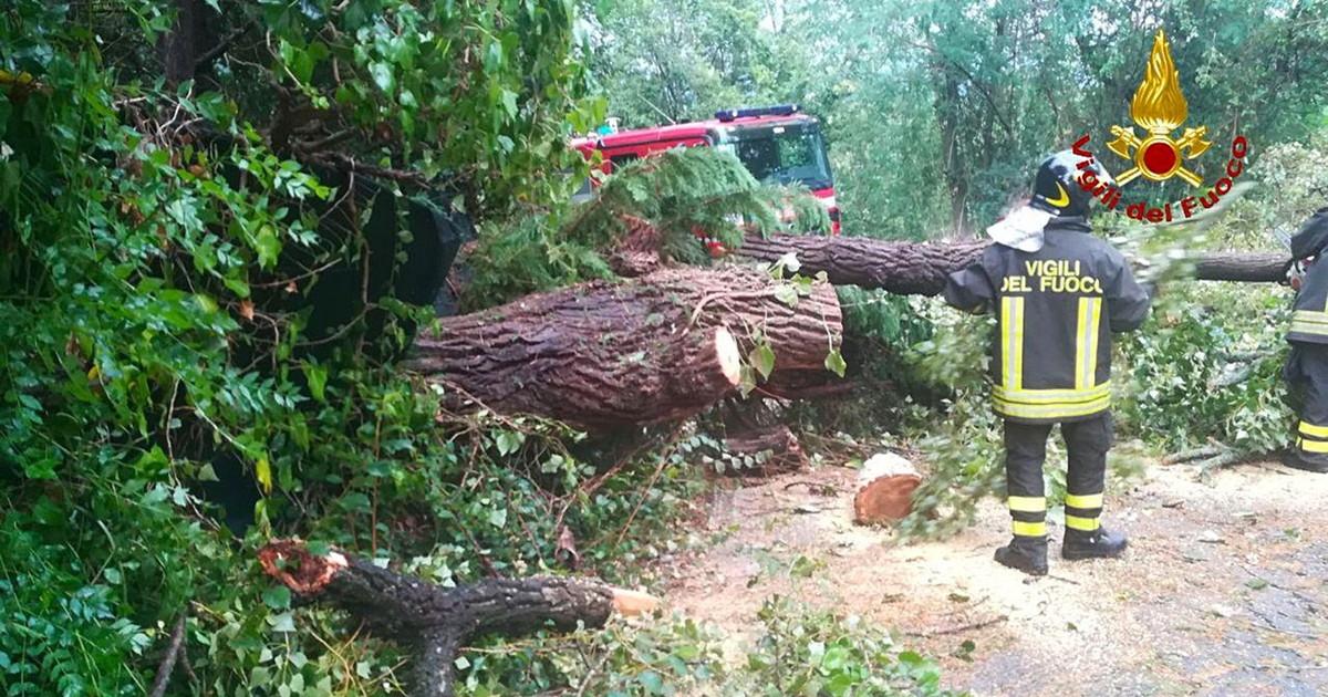 Fiumi esondati in Valle dAosta Vvf volontario muore per crollo albero