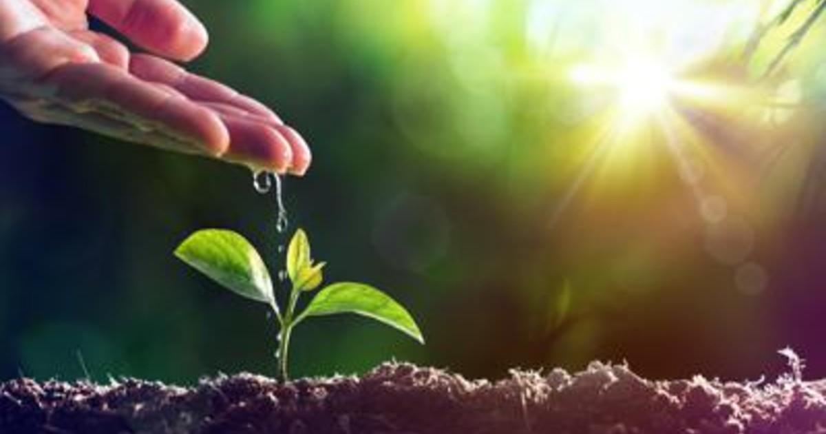 World Food Day Syngenta celebra gli eroi della filiera agroalimentare