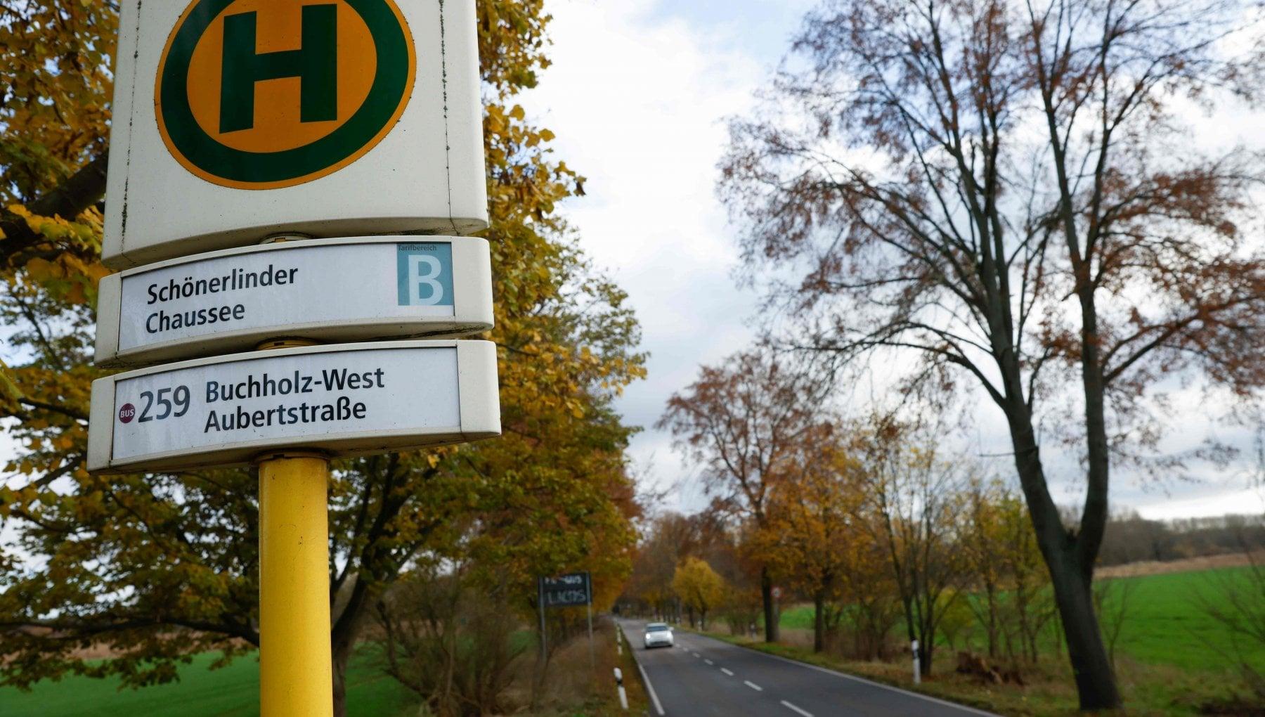 Catturato il cannibale di Berlino le ossa della sua vittima ritrovate in un parco