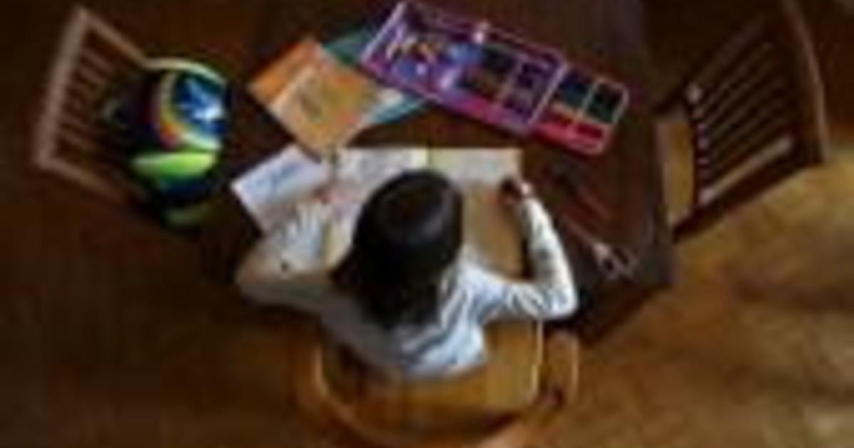 Coronavirus il report scuola a distanza piace a 1 ragazzo su 2 ma mancano amici