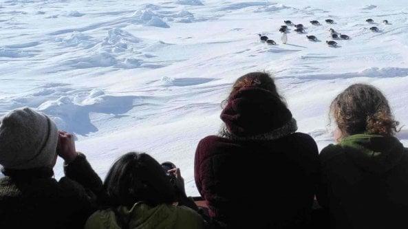 La missione della prof in Antartide in un libro. Cosi spiego ai miei studenti il clima che cambia 3