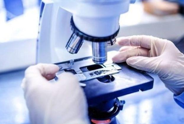 Novartis nei prossimi 3 anni 250 milioni di euro sulla ricerca