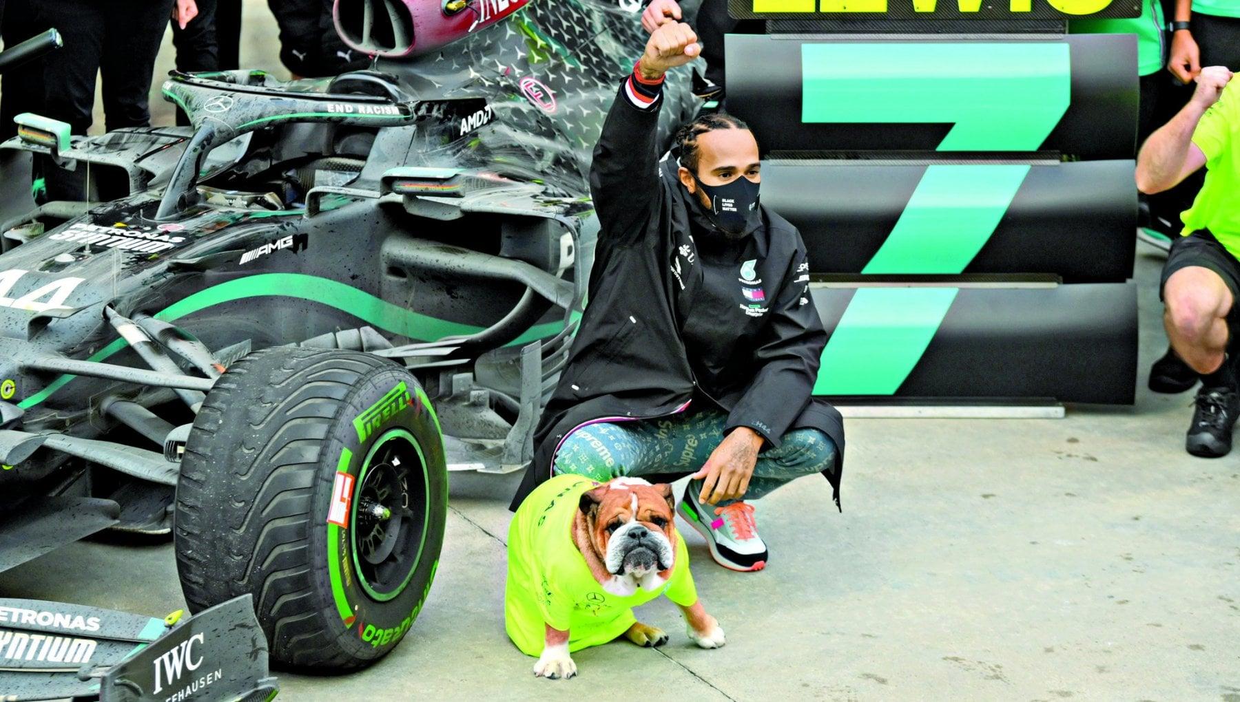 Roscoe il bulldog vegano di Hamilton star di Instagram