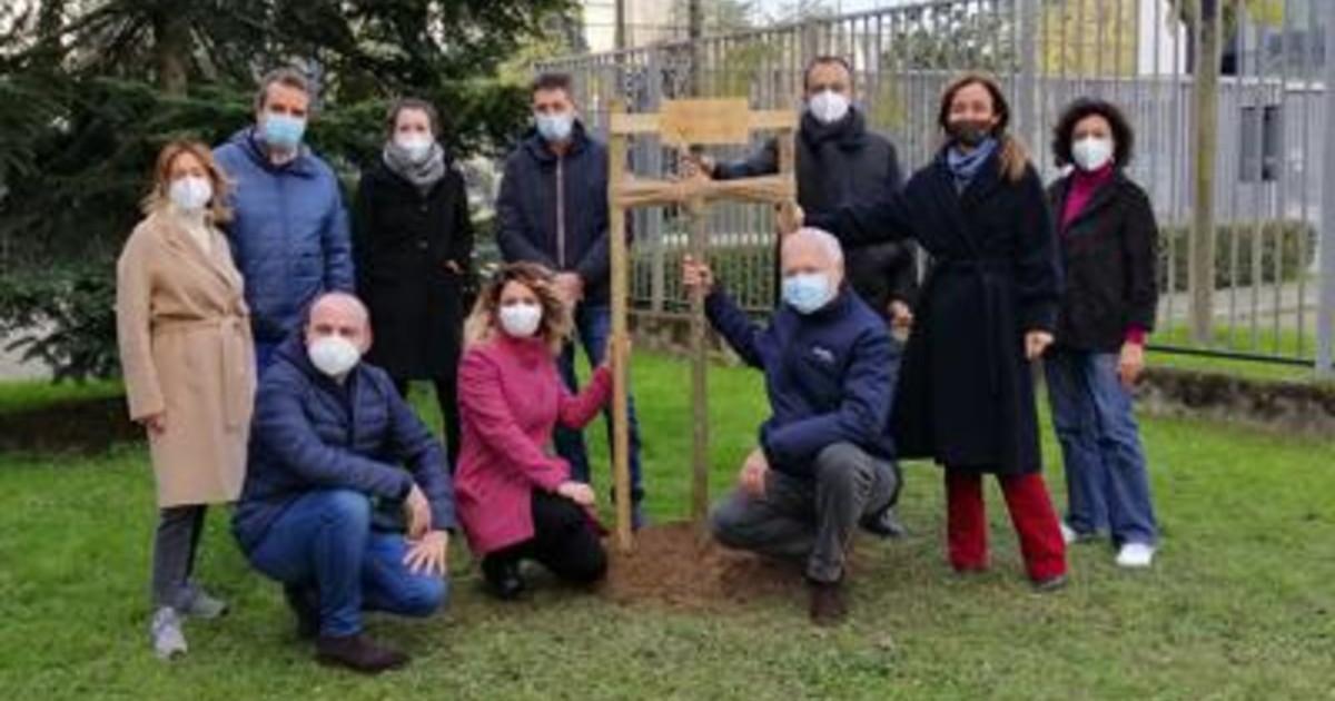 Snam pianta primo albero di una foresta dedicata ai dipendenti
