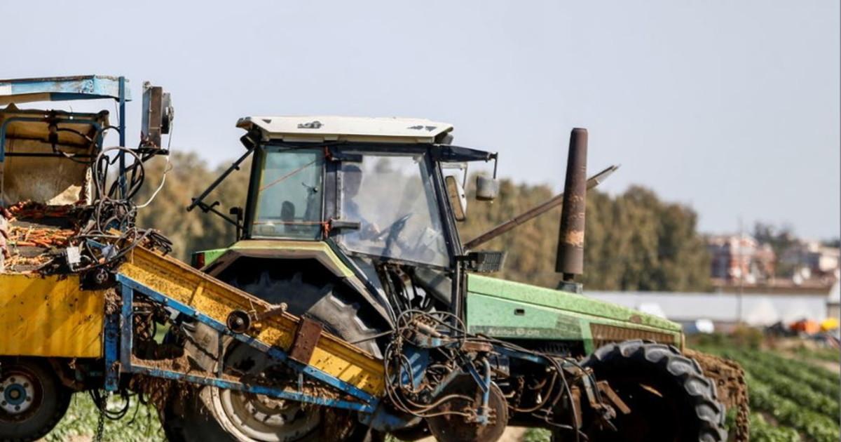 Confcooperative Lombardia sostiene le imprese favorendo investimenti per 50 milioni di Euro sulla Pac