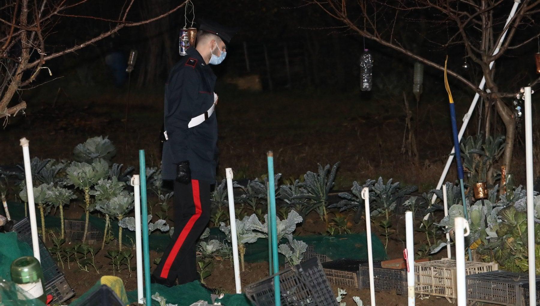 Firenze giallo del cadavere a pezzi in due valigie uomo ucciso con coltellata alla gola