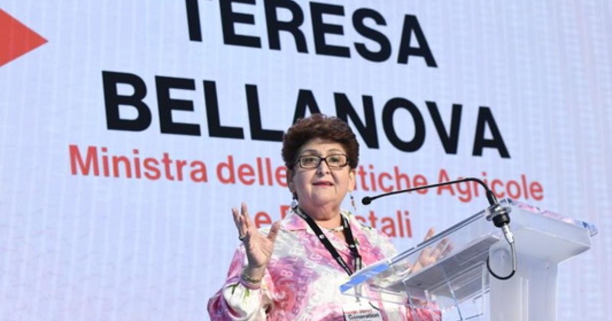 Governo Bellanova Se cade ora dipende da Conte aspettiamo risposte