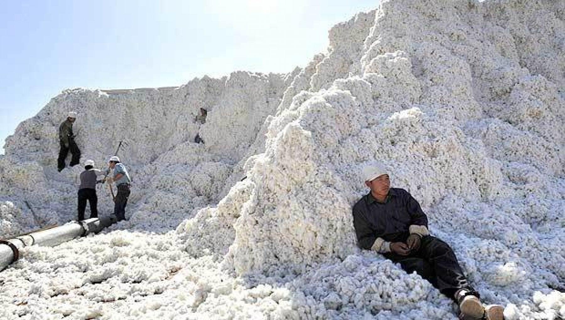 La Cina e gli schiavi del cotone