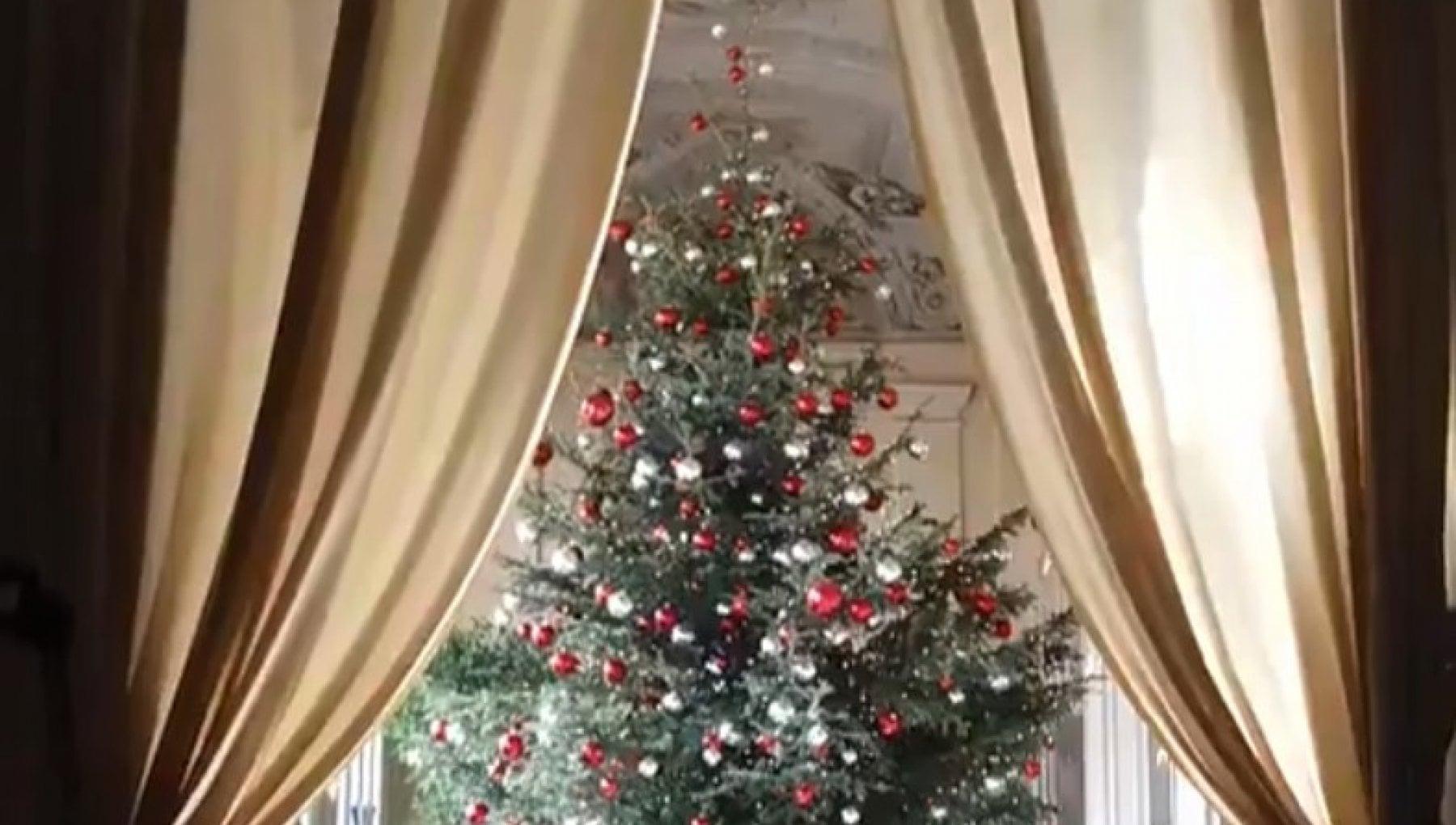 Lalbero di Mattarella il presepe di Meloni ecco gli auguri di Natale di politici e istituzioni