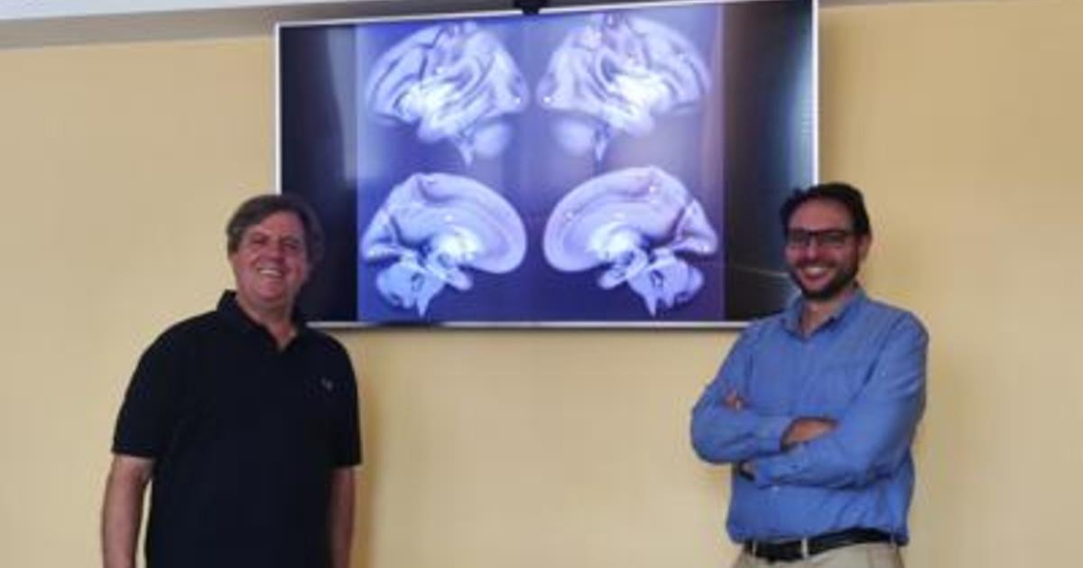 Ricerca impulsi elettrici per combattere ipertensione studio Neuromed
