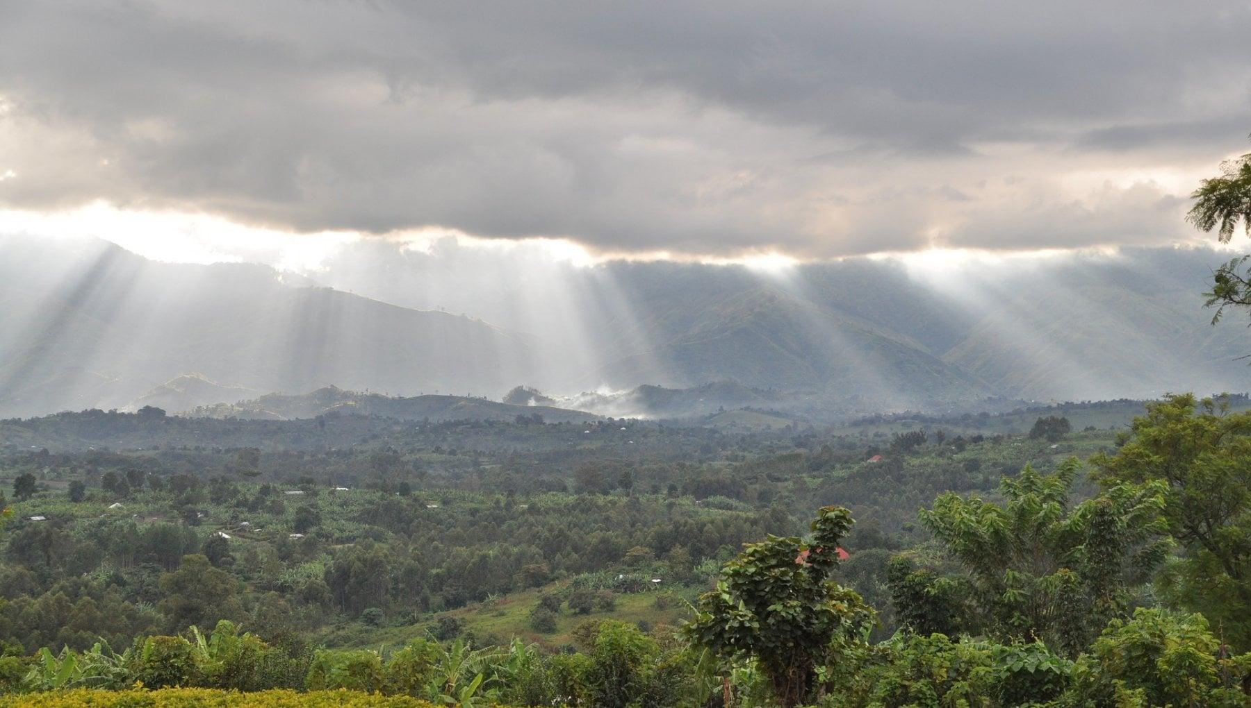 Africa buone notizie dal satellite in alcuni Stati cala la deforestazione