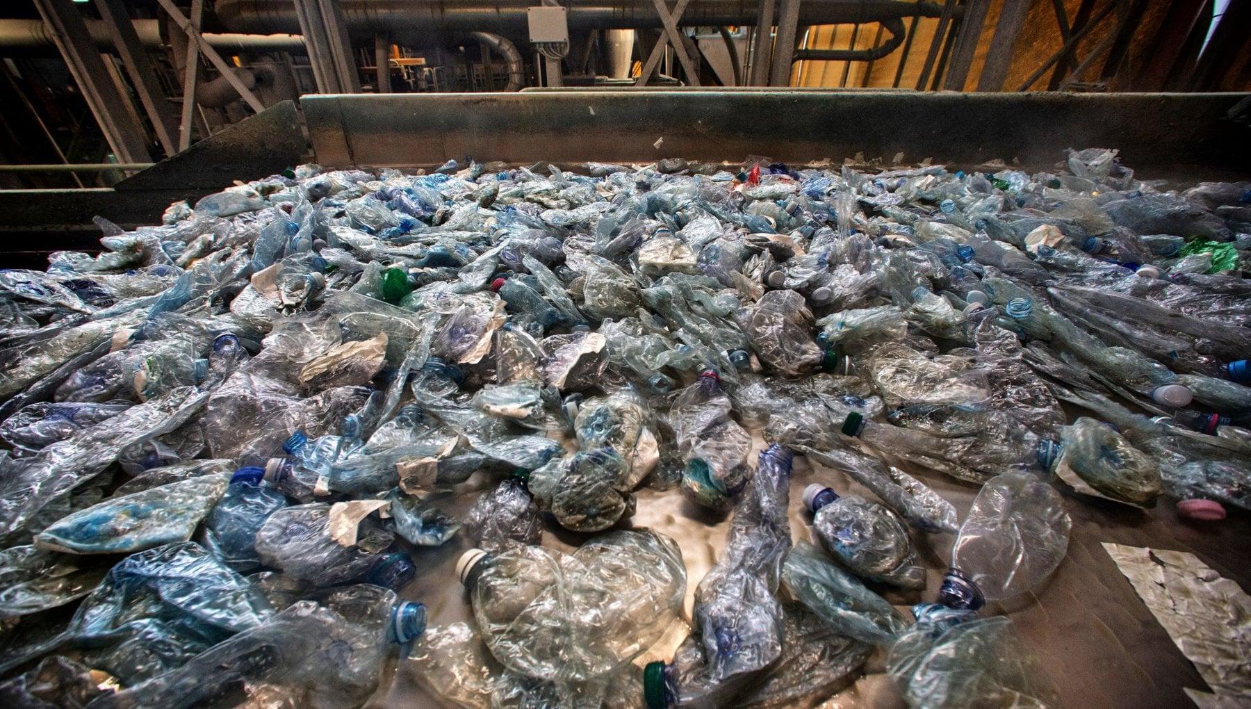Dietrofront sui piatti e bicchieri di carta non sono al 100 per cento biodegradabili in arrivo il divieto