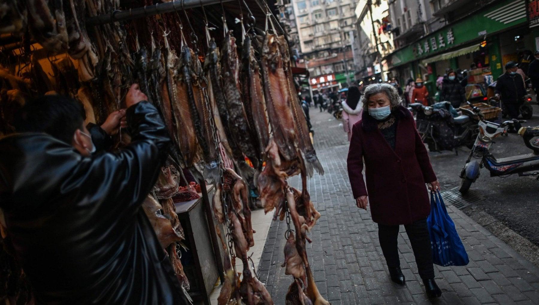 Ritorno a Wuhan un anno dopo alla ricerca del ground zero della pandemia