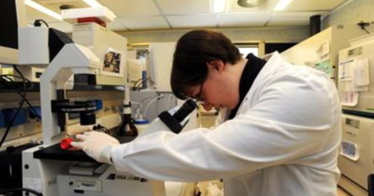 Tumori fegato con immunoterapia aumento sostanziale sopravvivenza